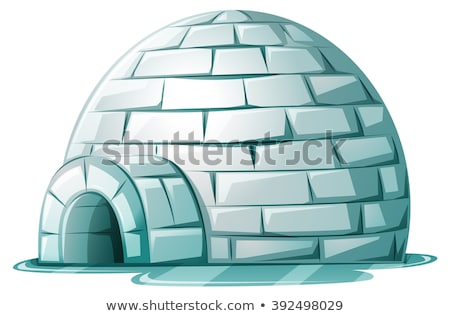 Igloo on icy ground Stock photo © bluering