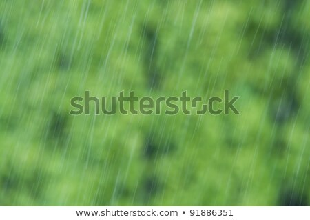 Raindrops Falling Down On Green Blurry Background Foto stock © tarczas