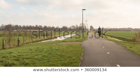 panoramic image of young woman riding a horse on the meadow stock photo © konradbak