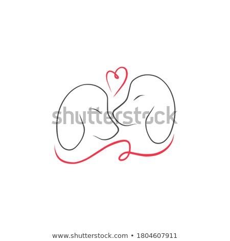 Logo evcil hayvan köpek siluet minimalist vektör Stok fotoğraf © Loud-Mango