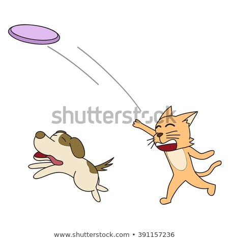 Dog running with a plate for throwing stock photo © Phantom1311