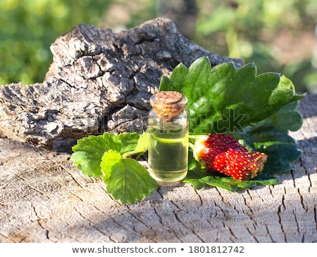 spa composition with strawberry stock photo © joannawnuk