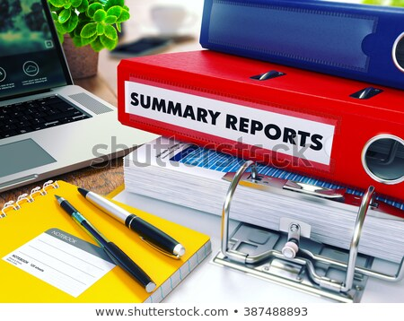 Summary Report on Office Folder. Blurred Image. 3D Render. Stock photo © tashatuvango