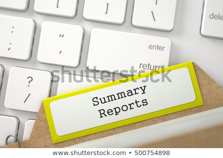 Index Card with Inscription Summary. 3D. Stock photo © tashatuvango