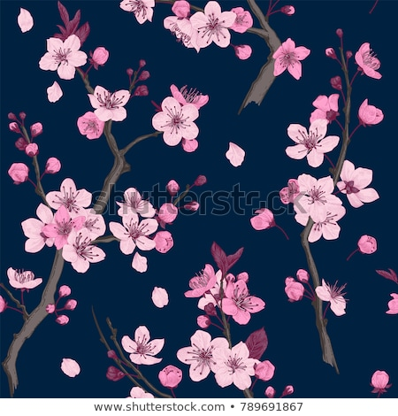 vector seamless floral background with cherry blossom pattern stock photo © dahlia