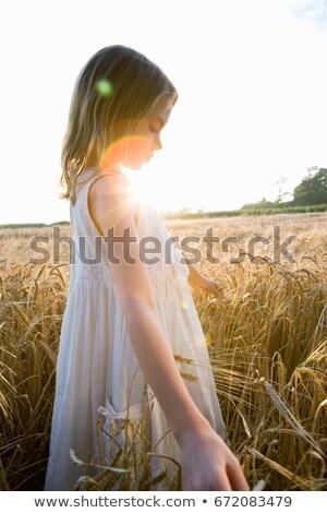 Lány sétál kukorica mező becsillanás jókedv Stock fotó © IS2