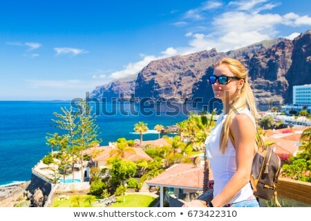 Los Gigantes Cliffs on Tenerife, Aerial View Stock photo © vlad_star