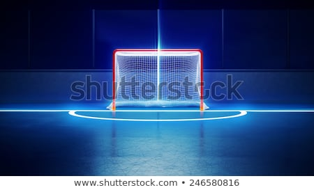 ice hockey ice rink and empty net Stock photo © fotoduki