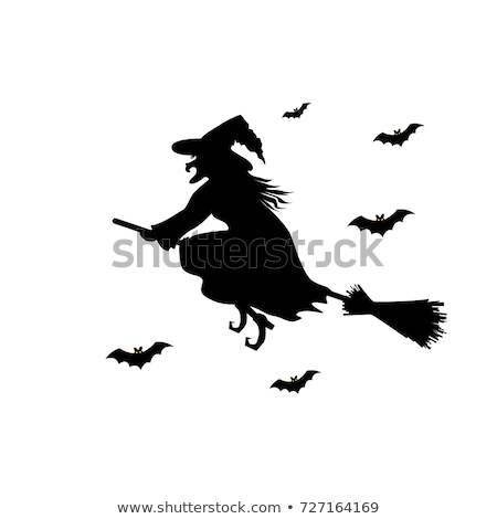 Outline Halloween witch, broom, bat silhouette on the white  Stock photo © TasiPas