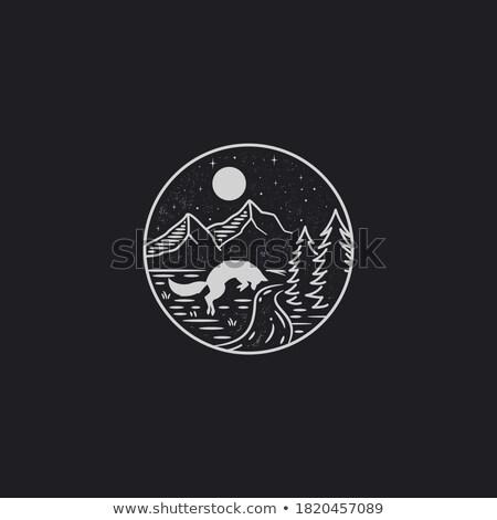 Mezzanotte scena montagna segno simbolo vettore Foto d'archivio © vector1st