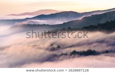 Köd hegyek völgyek fény szépség hegy Stock fotó © taviphoto