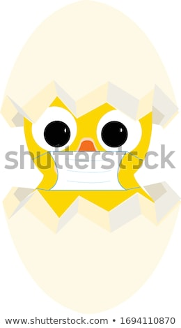 Cute chick gebarsten ei illustratie natuur Stockfoto © colematt