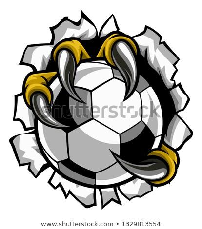 águila · fútbol · mascota · de · la · historieta · aves · fútbol · deportes - foto stock © krisdog