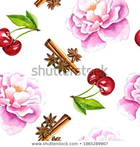 Vízfesték fahéj cseresznye piros étterem eszik Stock fotó © ConceptCafe