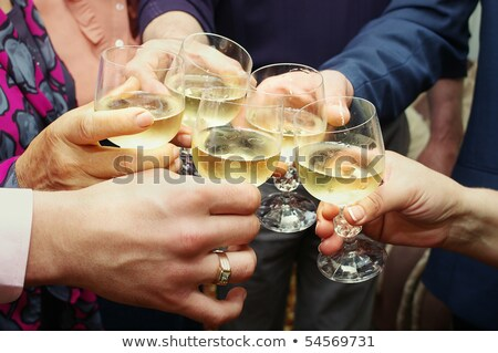 Group of cheerful senior friends with champagne making toast Stock photo © pressmaster