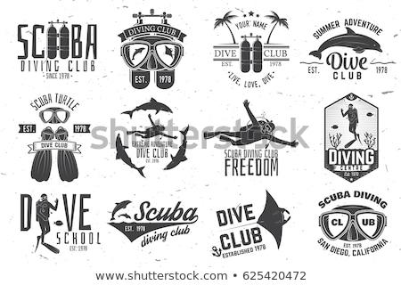 Búvárkodik címkék szett vízalatti úszik logók Stock fotó © netkov1