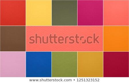 Collage couleur année vie corail Photo stock © dolgachov
