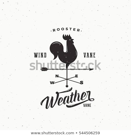 флюгер старые Blue Sky металл птица Церкви Сток-фото © 5xinc