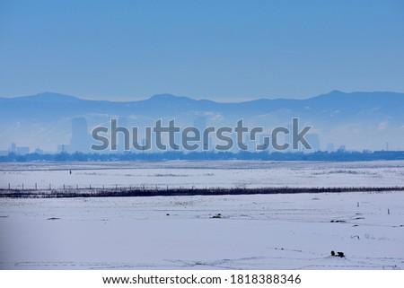 zachód · zimą · trawy · śniegu · dziedzinie - zdjęcia stock © pixelsaway