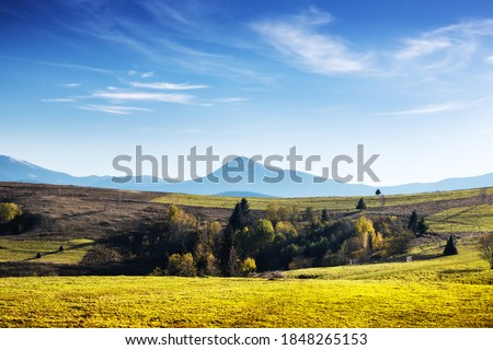 landscape in Carpathians Stock photo © OleksandrO