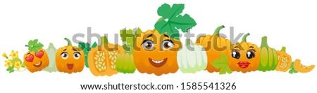 Naranja calabaza frontera cute Cartoon hortalizas Foto stock © Natalia_1947
