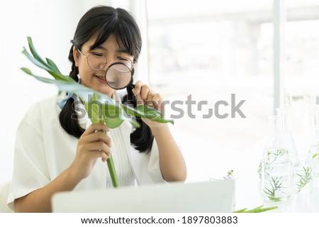 Lány kísérlet levél illusztráció iskola gyermek Stock fotó © bluering