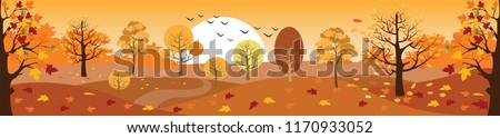 Autumn scene Stock photo © johnnychaos