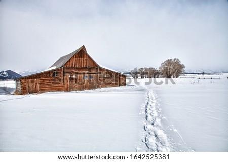settlement in winter landscape Stock photo © meinzahn