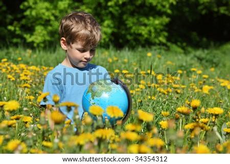 pitypangok · virágzó · mező · citromsárga · tavasz · legelő - stock fotó © paha_l
