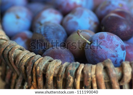 basket full of vegetables freshly collected Stock photo © nito