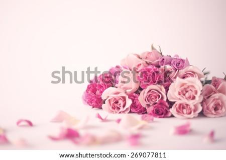 Tea rose background Stock photo © AGfoto