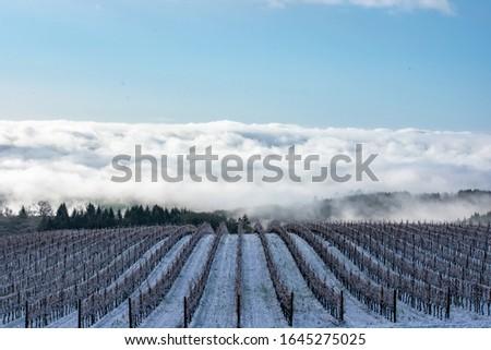 śniegu pokryty krajobraz zimą biały Europie Zdjęcia stock © FreeProd