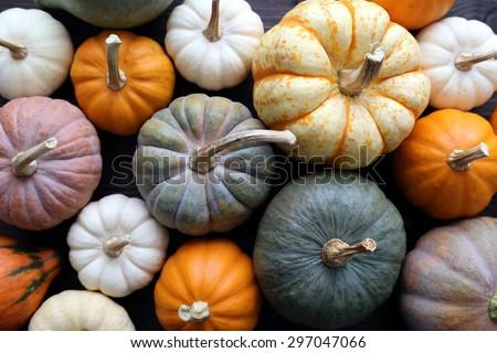 Sokoldalú válogatás tökök zöld ősz aratás Stock fotó © Melnyk