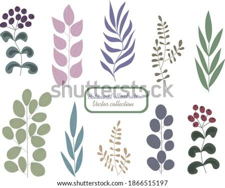 Set pacchetti diverso colori design alimentare Foto d'archivio © butenkow