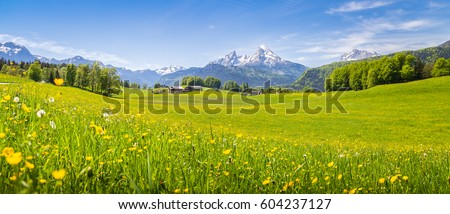 Green landscape Bavaria Germany Stock photo © w20er