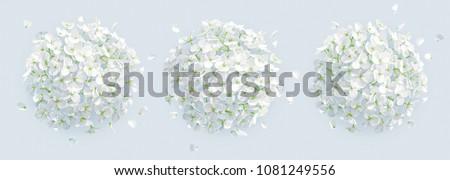 Virágcsokor fehér virág gyönyörű virág virágok liliom Stock fotó © ziprashantzi