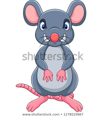 Deli küçük fare karikatür örnek bakıyor Stok fotoğraf © cthoman