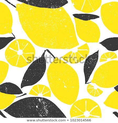 Basit siyah vektör limon örnek beyaz Stok fotoğraf © blumer1979