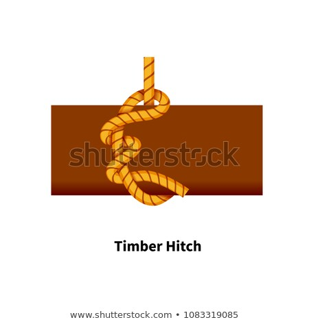 Timber Hitch sea knot. Bright colorful how-to guide on white Stock photo © evgeny89