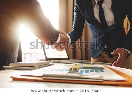 Spotkanie powitanie dwa działalności handshake ludzi biznesu Zdjęcia stock © Freedomz