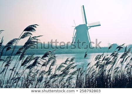 Hollanda fırıldak tan gün su gün batımı Stok fotoğraf © duoduo