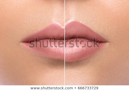 csinos · vonzó · nő · jelentkezik · szájfény · gyönyörű · nő · hosszú - stock fotó © olira
