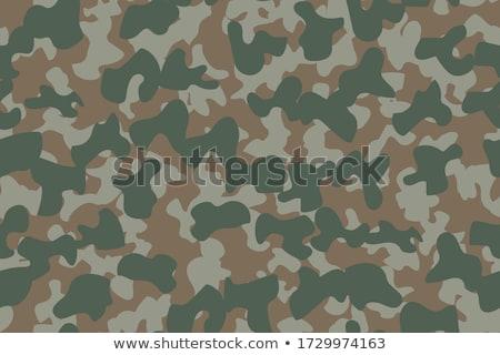 Militar bosques Foto stock © lkeskinen