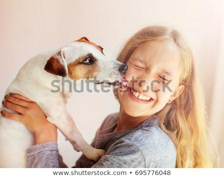 dog licking Stock photo © willeecole