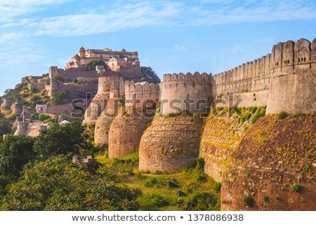 Tempio fort muro design architettura indian Foto d'archivio © Mikko