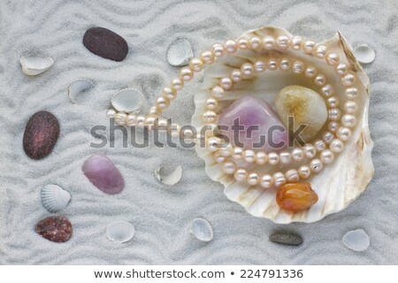 Macro necklace from pearls and sinks mollusks  Stock photo © yul30