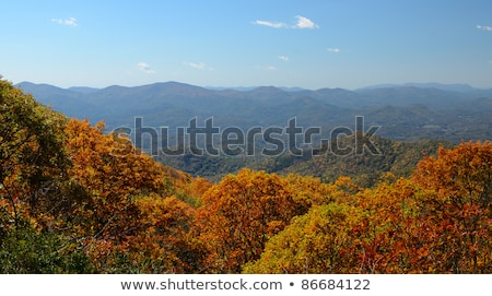 View of the Blue Ridge Mountains during fall season Stock photo © alex_grichenko