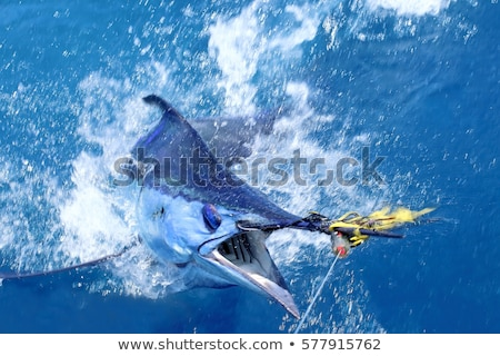 tekne · büyük · oyun · balık · tutma · tuzlu · su - stok fotoğraf © lunamarina