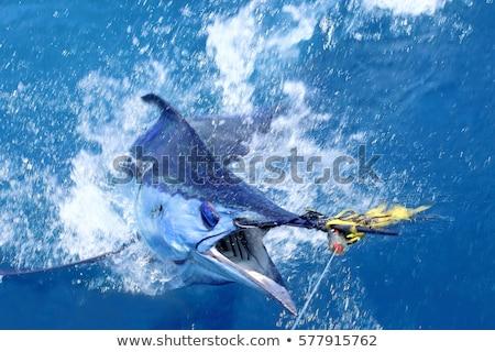 pescador · barco · grande · jogo · pescaria - foto stock © lunamarina