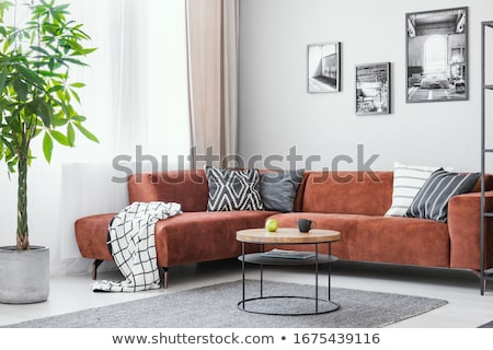 Big sofa Stock photo © ABBPhoto